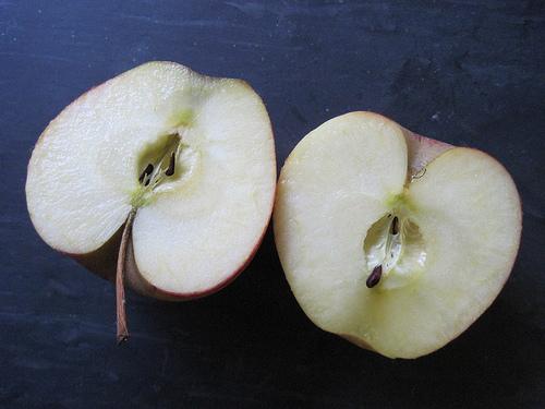 Idiom: bear fruit