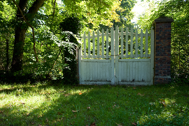 What could be behind these gates? Would you like to explore this garden?