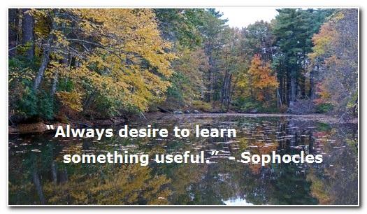 2botanicallinguist learning