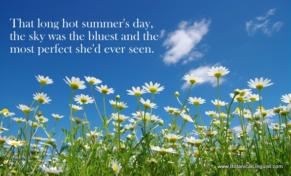 Superlatives - that hot summer's day the sky was the bluest and the most perfect she'd ever seen