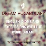 Text: Idioms and expressions with the word 'dream'