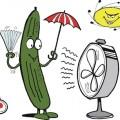 Idiom: as cool as a cucumber