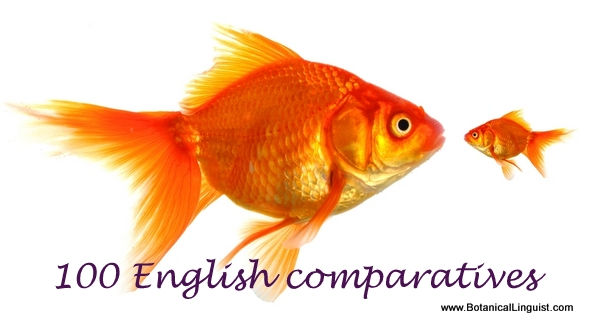 Bigger fish and smaller fish. English comparatives