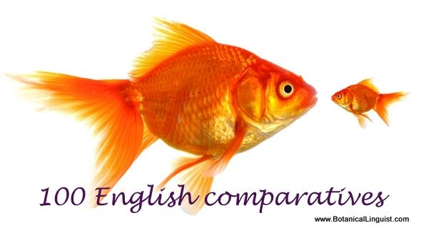 Bigger fish and smaller fish. English comparatives